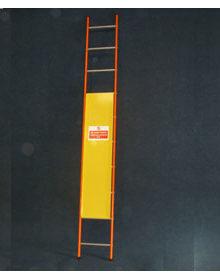 Ladder guards