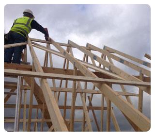 roof truss access ladder